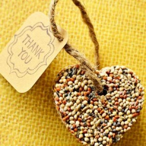 Bird Seed Creative Party Favors