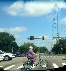 Amish on the move in sarasota